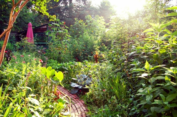 Heidi's garden in late June